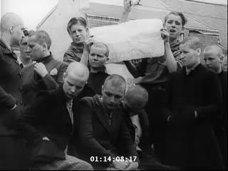 Nazi collaborators head shaved